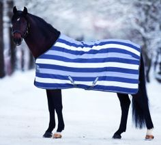 Horse Rugs Accessories Fly