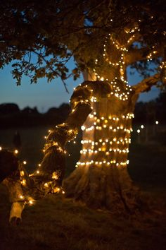 Meadow magic: twinkling trees and beautiful blooms - Autumn weddings - YouAndYourWedding