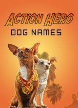 Action Hero Dog Names, find a great name for your all-action dog, at puppy names hq.com