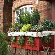 Seasonal Window Box Greenery