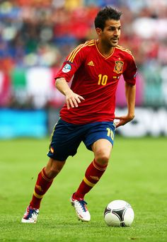 Cesc Fabregas Photo - Spain v Italy - Group C: UEFA EURO 2012