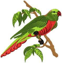 Parrot embroidery designs for hand embroidery - Google Search