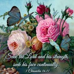 1 CHRONICLES 16:11 - Seek the Lord and His strength,  seek His face continually.