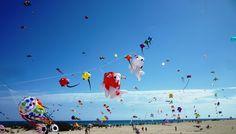 Gran Hotel Bahía Real (Ex Atlantis) Resort Spa, Sea, Painting, Bahia, Kites, Painting Art, The Ocean, Paintings, Ocean