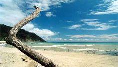 Cabo Blanco Nature Reserve - Google Search