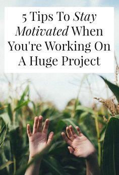 Trying to stay motivated while working on a huge, months-long project? Stay Focused, How To Stay Motivated, Creative Thinking, Design Thinking, How To Stop Procrastinating, Self Design, Patterns In Nature, Career Advice, Getting Things Done