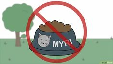 How to Get Rid of Raccoons. Raccoons are cute to watch on TV, but they're not so cute when they leave your trash strewn all over your backyard. The good news is that you can use humane techniques to get rid of raccoons around your house. Getting Rid Of Raccoons, Good News, Family Guy, Make It Yourself, Cute, Gardening, Fictional Characters, Easy, Kawaii