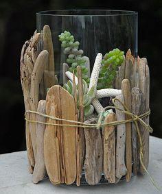 Succulent Terrarium With Beach Wood.