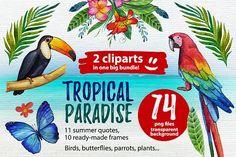 Tropical paradise by Art Loft on @creativemarket