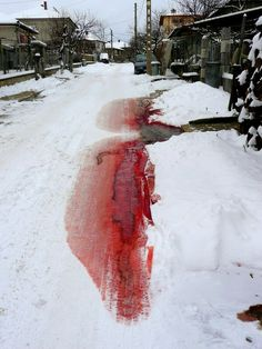 """Well that's not pretty."" Rex sighed, following the pool of blood."