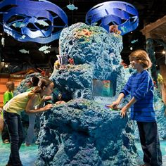 -The museum is popular with school groups on weekday mornings. They generally depart by mid-afternoon.  -Preview the latest IMAX show selection and schedules; see details.  -Experience Fernbank Museum like never before with the Fernbank Meridian app. This free mobile application uses innovative directional technology to deliver custom content and unique experiences to visitors touring the Museum. Click here for details and download instructions.