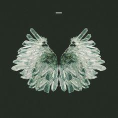 crystal wings. — Designspiration