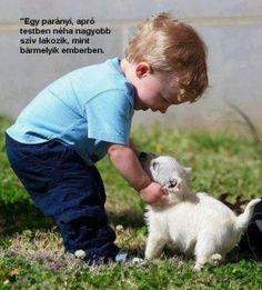 szeretet - Bing Képek