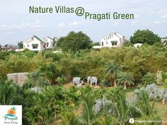 #NatureVillas at Pragati Green Living - Bright and airy living spaces boast large balconies with spectacular views of the breathtaking landscapes.