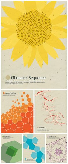 Series of posters created for the love of math, nature, art, and education.