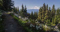 Goat Rocks Wilderness   Flickr - Photo Sharing!