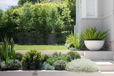 """Front Yard Garden Design Sloping Coastal Garden By Secret Gardens - Creating a garden on a sloping site is challenging. """"But those challenges drive opportunities,"""" says Matt, who designed this oasis in a beach suburb."""