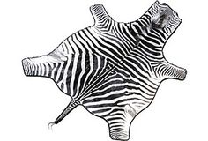 My zebra rug - Howard hunted it in South Africa and it's just gorgeous