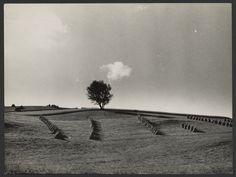 [Harvest Landscape]; André Kertész (American, born Hungary, 1894 - 1985); Paris, France; 1931; Gelatin silver print; 17.9 x 23.9 cm (7 1/16 x 9 3/8 in.); 84.XM.193.69; J. Paul Getty Museum, Los Angeles, California