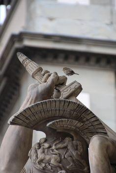 sparrow - Loggia dei Lanzi - Florence Tuscany, Florence, My Photos, Greek, Lion Sculpture, Birds, Statue, Art, Art Background