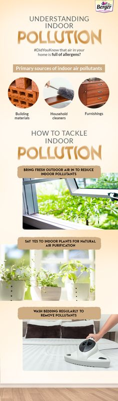 Know how you can manage indoor pollution.