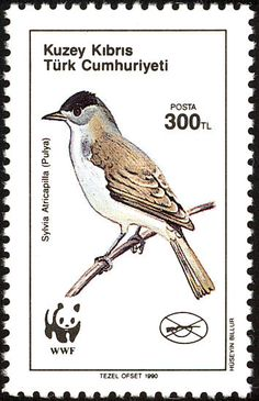 Eurasian Blackcap stamps - mainly images - gallery format