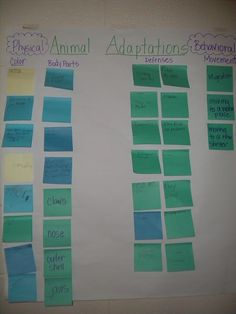 To recap what we've learned! When first teaching about animal adaptations, have the students brainstorm what different animals do to survive, then put them all on the board and discuss why animals have to adapt. Fourth Grade Science, Middle School Science, Elementary Science, Science Classroom, Teaching Science, Science Education, Classroom Ideas, Teaching Ideas, Future Classroom