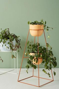 Garden Party Montgolfier Indoor/Outdoor Plant Stand Stuttering Toddler For a parent, it is a big sho Indoor Outdoor, Outdoor Plants, Potted Plants, Outdoor Gardens, Outdoor Plant Stands, Balkon Design, Decoration Plante, Diy Plant Stand, Interior Plants