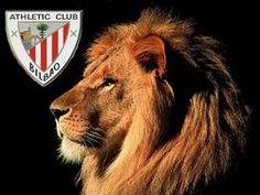 Visitar San Mamés y el Museo del Athletic Club