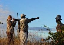 Walking safaris in the Kruger National Park of South Africa with Great Limpopo Wilderness Camps & Trails. Camp Trails, Hiking Trails, Kruger National Park, National Parks, Wilderness Trail, Adventure Activities, The Great Outdoors, Camps, South Africa