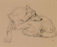 Find artworks by Eugène Delacroix (French, 1798 - on MutualArt and find more works from galleries, museums and auction houses worldwide. Animal Sketches, Animal Drawings, Art Sketches, Art Drawings, Romanticism Artists, William Turner, Gesture Drawing, Historical Art, Art Graphique