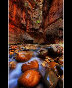 The Narrows, Virgin River in Zion National Park.