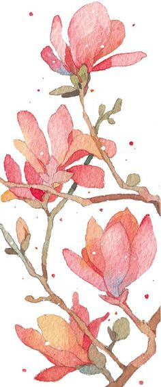 Pretty coral florals