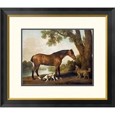A Bay Hunter, a Springer Spaniel and a Sussex Spaniel, 1782 by George Stubbs Framed Drawing Print