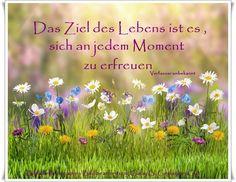 Das Ziel des Lebens ist es, sich an jedem Moment zu erfreuen. - Verfasser unbekannt - ~ Quelle: GedankenGut https://www.facebook.com/Gaby.GedankenGut/ http://www.dreamies.de