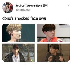 Dong is such a cutie Super Junior, Monsta X, Got7, Shocked Face, Sassy Diva, Kim Hanbin, Funny Kpop Memes, Sky High, Yg Entertainment