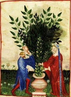 Tacuinum Sanitatis, ca. 1400