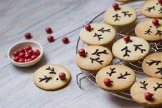 La 1ère case de notre calendrier de l'Avent gourmand dévoile ces biscuits Rennes de Noël: de savoureux sablés vanille très facile à décorer! Christmas Reindeer Cookies, Christmas Biscuits, Gingerbread Cookies, Brownie Cookies, Cookie Bars, Macarons, Savoury Baking, No Bake Pies, Plated Desserts