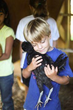 Love all Creatures - Kids 'Farm to Table Camp - hannah * honey & jam, via Flickr
