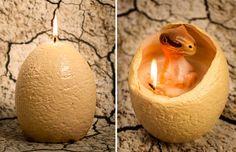 Vela ovo revela dinossauro ao ser queimada - Hatching Dinosaur Candle;