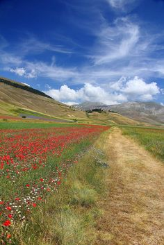 Castelluccio di Norcia | Flickr - Photo Sharing!
