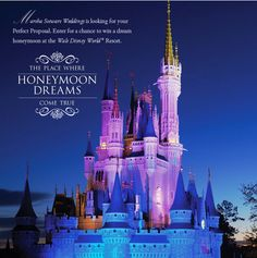 Disney World Honeymoon Wishes