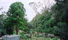 nowra animal park, australia