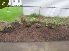 Proven Beauty | Gardening Inspiration | diy-hugelkultur