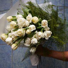 #PohoFlowers #Poho #Potts #Point #Sydney #Florist #White #Orchid
