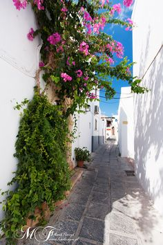Pretty path in Lindos, Rhodes , Greece  Lindos is pure ancient history and mythology