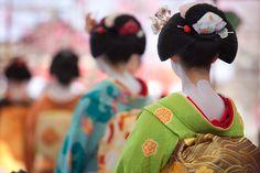Ofuku hairstyle of senior maiko.