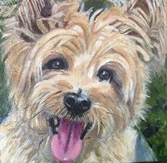 Sparky by Judy Rayer in the FASO Daily Art Show