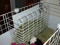 Under shelf shelving unit used as a hay holder..I have seen these at the Dollar Tree!!