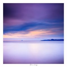 Beautiful Purple Photograph  Very Large Wall by CrionnaPhotography, $140.00